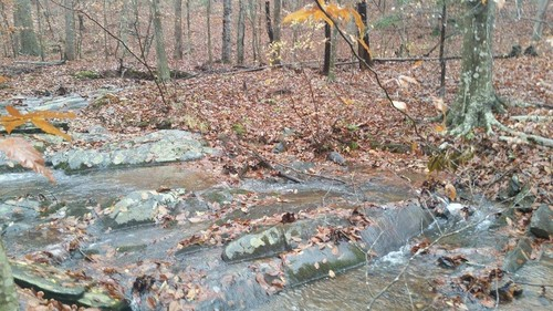 2.28 Acres of Beautiful Wooded Land with Creek - TBT Harbour Street - Stuart, VA