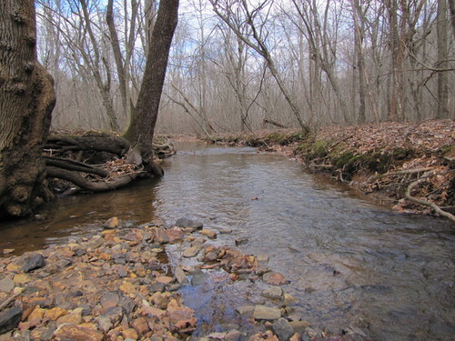 Beautiful 10 Acres with Great Building Sites,