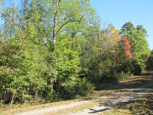 2.0 Acres of Beautiful Mountain Lane - Lot 15 Melmark Acres Trail - Stuart, VA